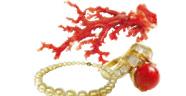 珊瑚・真珠・血赤珊瑚お持ちください!